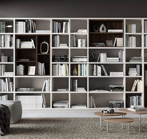 Library Storage with Light Grey Shelving and Dark Brown Inserts